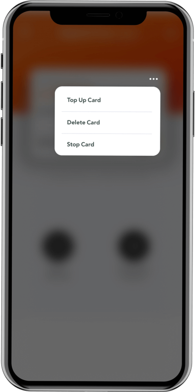 3-f-card-options